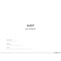 Modèle d'audit de site web à télécharger