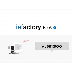 ebook audit ergonomique